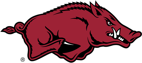picture of a razorback
